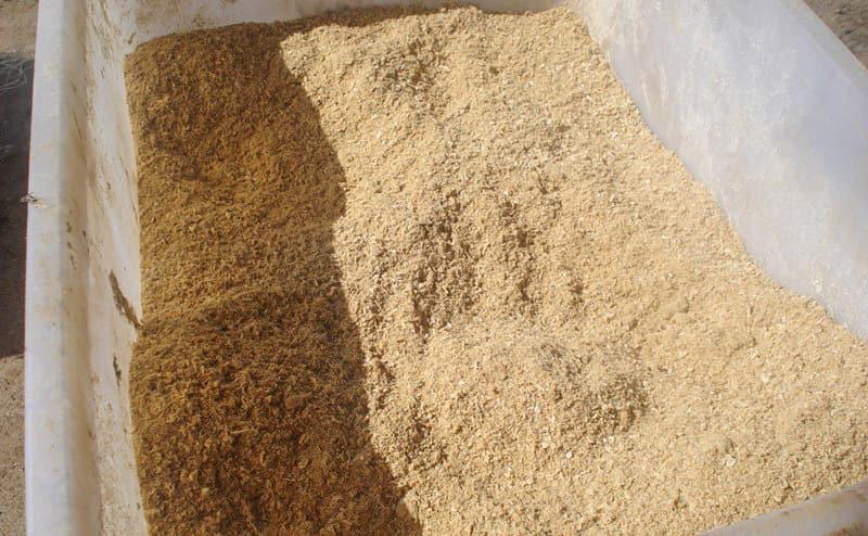 tepung ikan untuk pakan ternak
